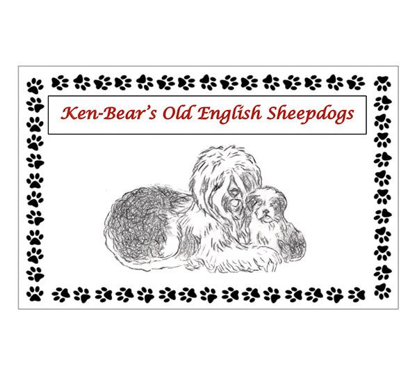 Ken-Bear