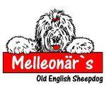 Melleonaers