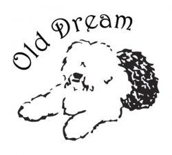 Old Dream