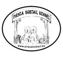 Piraza
