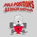 Pole-Position's