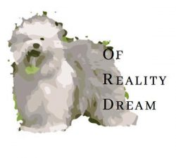 of Reality Dream